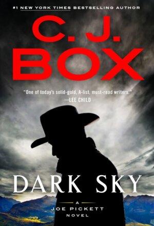 Dark Sky ( Joe Pickett Novel #21 )